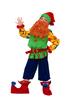 Гном Том детский карнавальный костюм, изображение 2